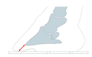 Vue de côté : longueur de pince