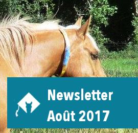 Newsletter Août 2017