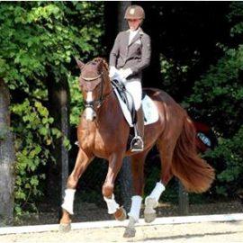 [Résumé] L'équitation, un sport qui améliore l'équilibre – Olivier et al, 2019