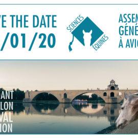 [AG 2019] Avignon