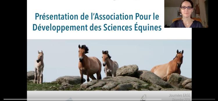 Présentation vidéo de l'association pour le développement des sciences équines